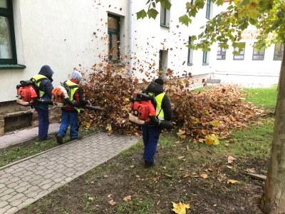 Listopadový úklid listí